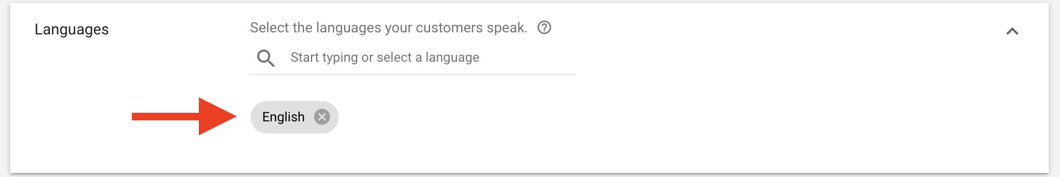 9 Include languages spoken